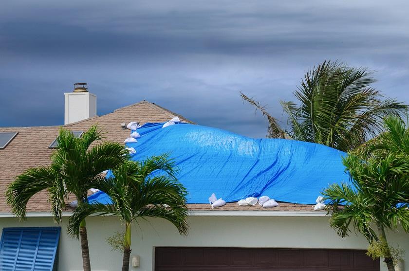 Storm Damage Claim